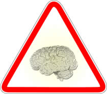 Las leyes del cerebro